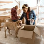 packers and movers for pet relocation